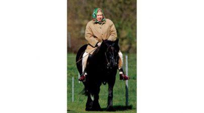 الملكة إليزابيث تمتطي حصانها الأسود... يومياً