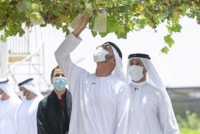 محمد بن زايد: الزراعة من صميم أمننا الوطني بمفهومه الشامل