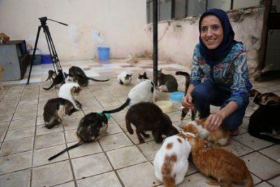 مغربية تحول منزلها وسط الرباط إلى مأوى للقطط