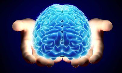 فريق ألماني: العلاقة كبيرة بين السعادة وحجم المخ