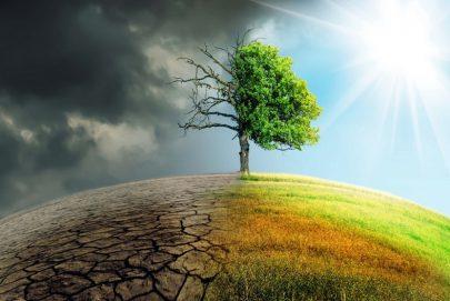 لا يمكن حل أزمة المناخ من دون إفريقيا