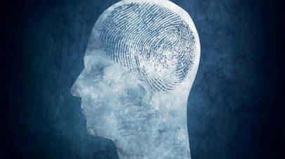 مثل الأصابع... لكل شخص «بصمة دماغ»